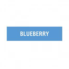 ELQD ECIGS – Blueberry – 6mg (10ml)